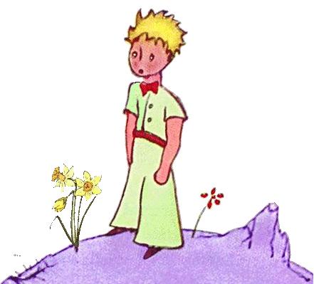 Le Petit Prince (eBook illustré) - A. de Saint Exupery