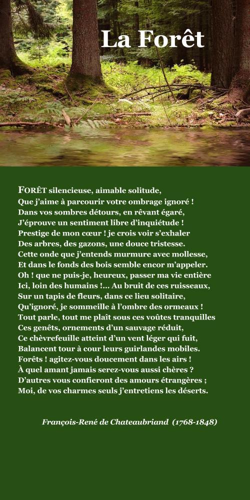 Chateaubriand, La Forêt