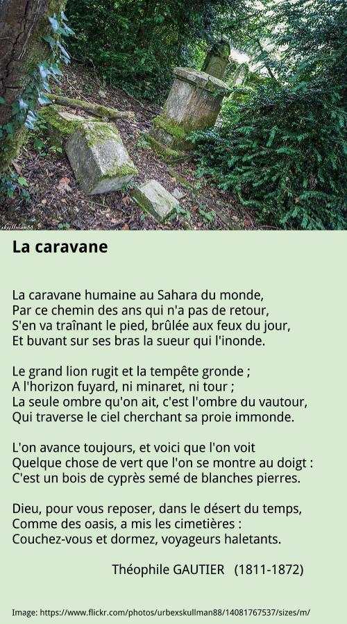 theophile-gautier-la-caravane